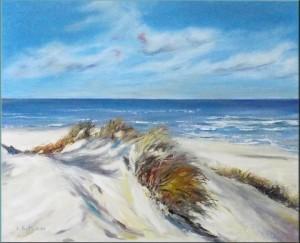 Texelse duinen